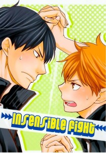 Haikyu!! dj - Insensible Fight