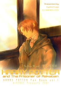 Harry Potter dj - The Sleepy Wizard