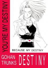 Dragon Ball Z dj - Destiny