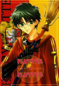 Harry Potter dj - Flutter Flutter